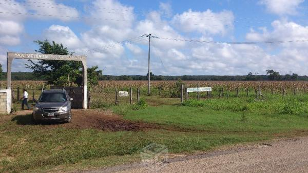 En venta precioso rancho de 100 hectareas en edzna