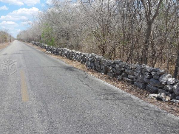 Tierra Del Toh