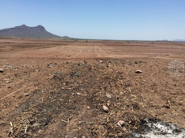 22 hectareas de tierra temporales