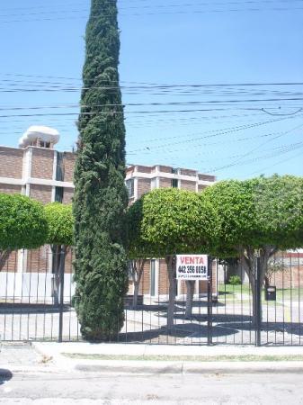 El Jacal, Ubicadísimo atrás Hospital San José