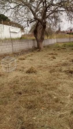 Lote en Fraccionamiento Pedregal de Oaxtepec
