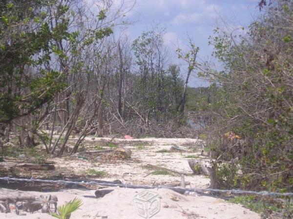 Terrenos en zona turística de playa