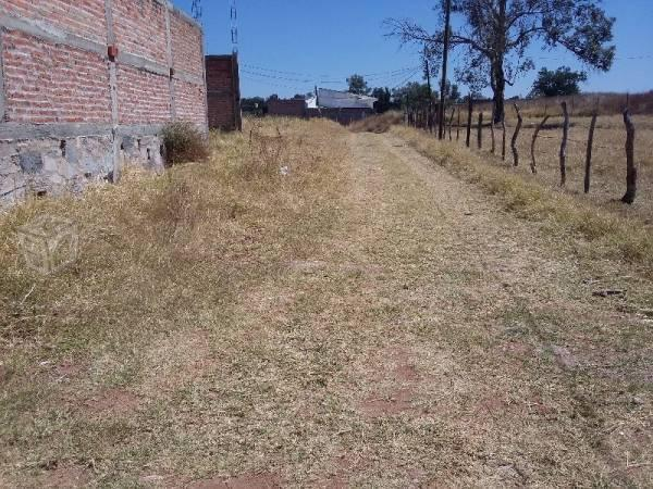 Rio Blanco terreno